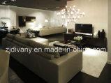 Sofà moderno del fabbricato del sofà del cuoio del salone di stile (D-72-D)