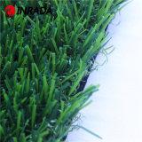 [هيغقوليتي] حديقة عشب اصطناعيّة لأنّ منظر طبيعيّ