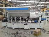 Machine de bordure foncée de système de régulation d'AP