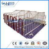 Ferme porcine de haute qualité d'équipements de reproduction énoncé des travaux de calage de la gestation