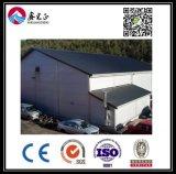 Armazém personalizado alta qualidade da construção de aço (BYSS040)