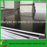 Álamos Core película impermeable para la construcción de madera contrachapada de cara