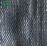Stuoia tessuta pp 100% di controllo di Weed di agricoltura del tessuto del Virgin
