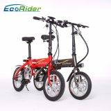 E6-4 Ecorider che piega bici elettrica con il motore della batteria 36V 250W Burshless di Llithium