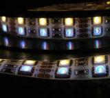 RGBW LED Tiras de Luces el 120LEDs / M en doble fila