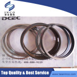 Dongfeng Truck를 위한 Dcec Diesel Engine Auto 3802421 Piston Ring