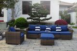 Mobilia di vimini del giardino di svago esterno