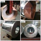 I più nuovi disegni hanno preverniciato le bobine d'acciaio galvanizzate & PPGI