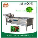 Máquina de lavar da fruta