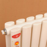 La température de contrôleur pour la chaufferette chauffant les radiateurs centraux