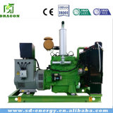 Gerador de energia de biogás 10-50kw para farm com CE ISO