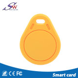 Изготовленный на заказ ABS Keychain Hf RFID 13.56MHz имени для контроля допуска