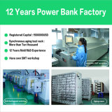 Bank der Energien-D11, LED-Bildschirmanzeige-Handy-Aufladeeinheit 10000mAh