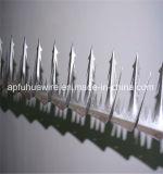 최고 검술 면도칼에 안전 벽 스파이크는 공장 또는 담을 못을 박는다