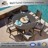 Goed Furnir wf-17118 het Dineren van de Rotan 7PC Reeks met Bijeenkomst
