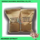 Fertilizzante organico del migliore di prezzi di qualità estratto dell'alga