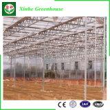 中国の植わることのための情報処理機能をもったポリカーボネートの温室