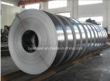Bobine 304 316L 310S 321 317 d'acier inoxydable
