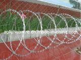 Populares SUS 304 Razor el alambre de púas