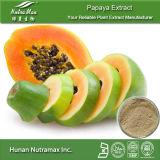 100% натуральные папайи извлечения (передаточное число: 4: 1, 5 - 1 10: 1, 20: 1) --Nutramax поставщика