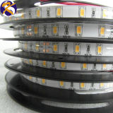 3000k 14,4wsmd 5630 Bande LED (KS-W661C)