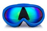 Das angepasste Mädchen scherzt Sport-Glas-Sicherheits-Schutzbrillen für Skifahren