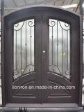 Поощрение стали безопасности двойной записи из кованого железа двери двери