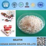 산업 젤라틴
