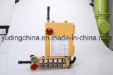 12 contrôles sans fil F24-12D d'Industtrial Radio Remote de double vitesse de bouton