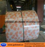 Vorgestrichener galvanisierter Stahlring mit Blumen-Entwurf