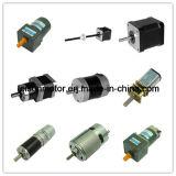 12V 24V 16mm Mini DC Geareary Gear Micro Motor