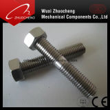 Boulons à vis en acier inoxydable avec écrou hexagonal DIN975 DIN976