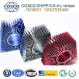 Konkurrierender Aluminiumprofil-Strangpresßling für Kühlkörper mit der Anodizing&CNC maschinellen Bearbeitung
