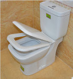 정연한 디자인 목욕탕을%s 화장실 2개 피스 Washdown Wc