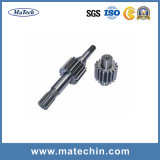 OEM Custom CNC Usinagem Worm Gear Shaft Forging