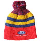 Logotipo personalizado Logotipo bordado de lã de acrílico Esportes de inverno Esqui Chapéu quente de malha de malha