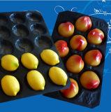 2017 Spitzenverkäufer-China-Wegwerfplastiktellersegmente für frisches Obst- und Gemüsedie verpackentellersegment-freie Probe pp., die Tellersegmente verpackt