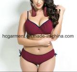 Plus-Größe Bikini-Schwimmen-Abnützung, großer Badeanzug für Frauen