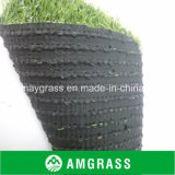 PET Artificial Grass für Leisure Landscape Grass