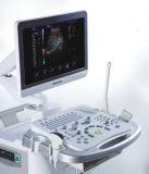 Hochwertiges Farben-Doppler-Ultraschall-System mit Fühler des Datenträger-4D