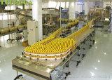 Botella de aceite de máquina de llenado automático
