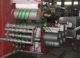 Qualitätssicherungs-Haustier-Stahlgurtenproduktionszweig mit Preis