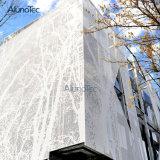 Reticolo di alluminio dello schermo del taglio del laser del comitato della facciata del metallo del rivestimento