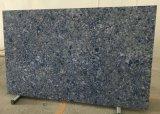 Pierre de marbre blanche conçue de quartz de carrelages