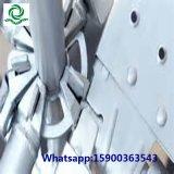Q345 de Steiger van Cuplock van de Steiger van Ringlock van het Staal