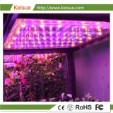 La luz de la placa de LED Keisue Granja vertical con Full Spectrum