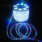변화 LED 유연한 네온 밧줄 가벼운 번쩍이는 LED 방수 밧줄 빛을 착색하십시오