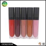 L'offre spéciale colore le produit de beauté liquide imperméable à l'eau durable Lipgloss de base
