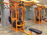 Synrgy Tz-360t /Multi Functional Gym Equipment/360 Synergy Equipment/