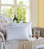 L'oca bianca della costruzione dei tre alloggiamenti giù mette le piume al cuscino